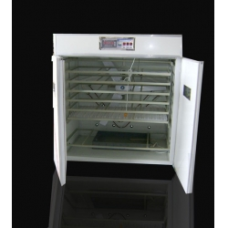 Hatching eggs incubator